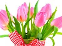 Вітаємо усіх жінок-спілчанок Чернігівщини зі святом 8 березня!